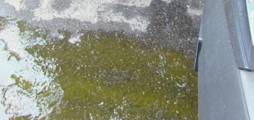 Вытекает охлаждающая жидкость из под капота Рено Логан