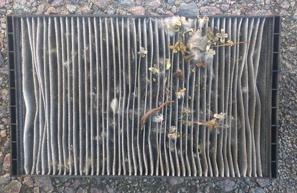 Внешний вид грязного и старого салонного фильтра Лада Гранта