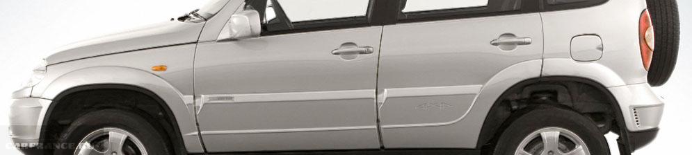 Водительская дверь на Нива Шевроле вблизи