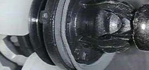 Клипса крепления задней обшивки двери на Форд Фокус 2
