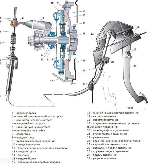 Конструкция сцепления и привода в сборе на автомобиле ВАЗ-2110 и модификаций