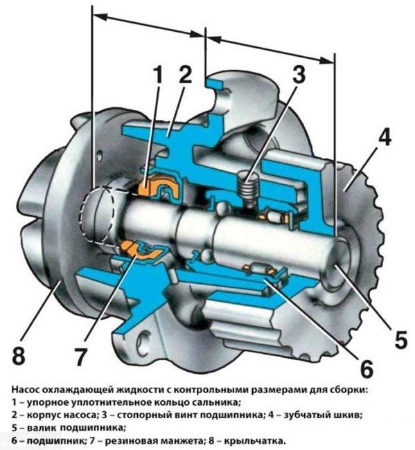Схема устройства помпы, используемой для перекачивания тосола в двигателе ВАЗ-2110