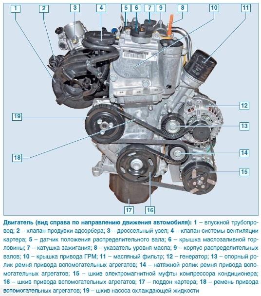 Схема размещения навесного оборудования на двигателе Фольксваген Поло седан со стороны привода ремня