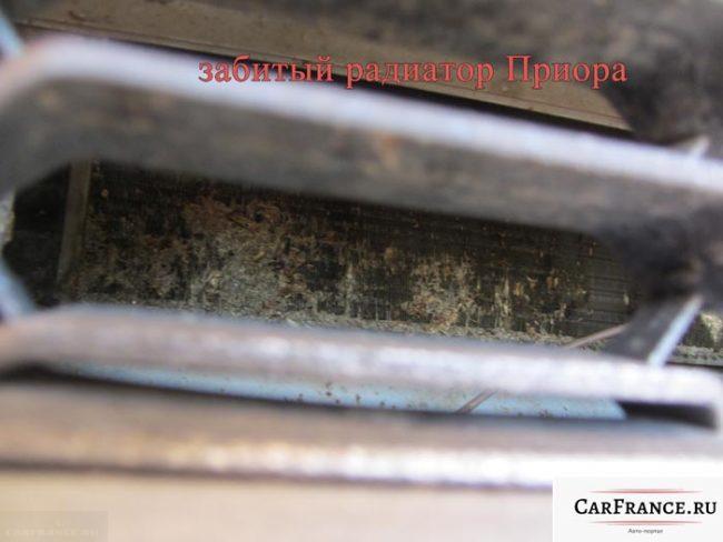 Сильно забитый радиатор охлаждения на Лада Приора фото спереди